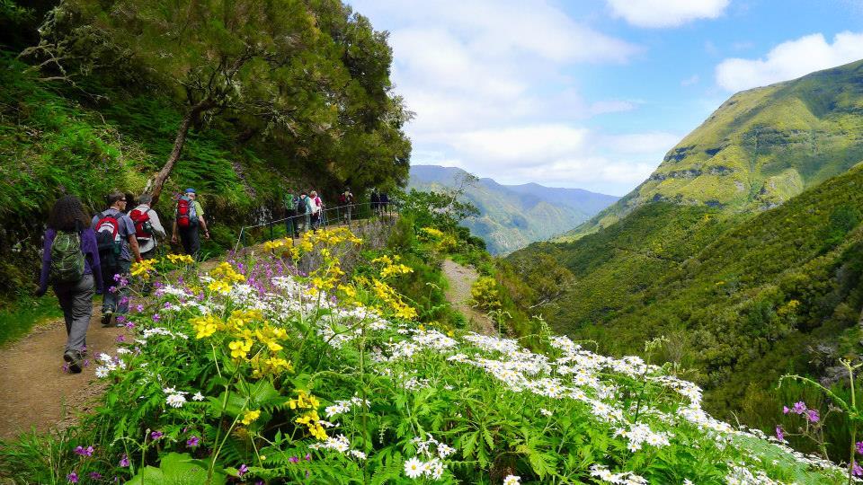 Madeira a la Christa