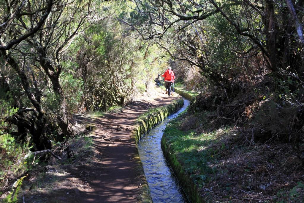Levadawandern ist typisch für Madeira