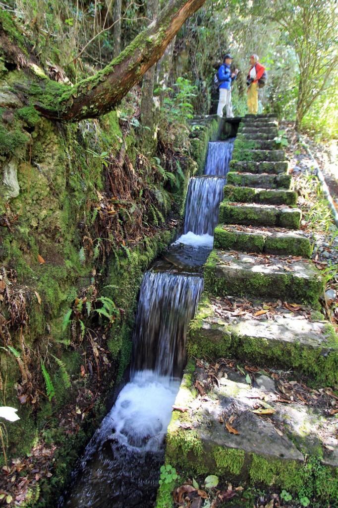 Diese schöne Wassertreppe ist zwar kein Geheimtipp mehr, Christa schaut aber bei viel besuchten Zielen auf die richtige Zeit. Am späteren Nachmittag  - wenn die anderen Gruppen weg sind - hat man dann hier wieder herrliche Stille...